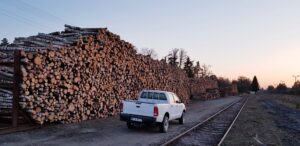 handel-drewnem-i-biomasa-sorbus-2