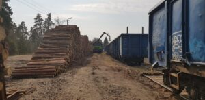 handel-drewnem-i-biomasa-sorbus-3