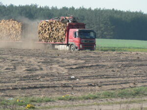 handel-drewnem-i-biomasa-sorbus-6